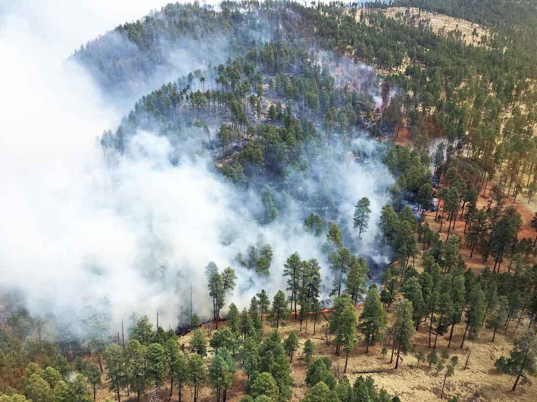 Rattlesnake Fire burns almost 17,000 acres in eastern Arizona