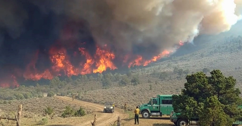 Strategic withdrawal on the Horse Park Fire in Colorado