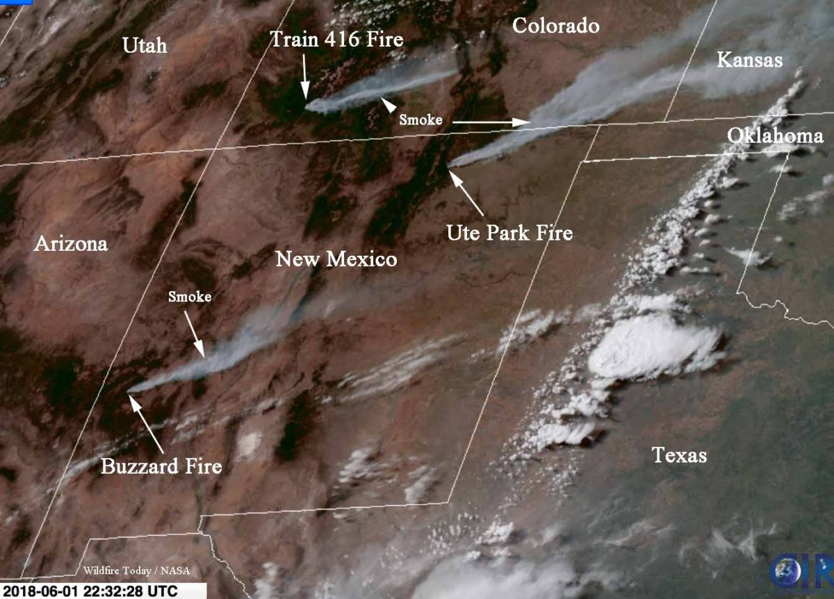 new mexico fire incident report - Akba.greenw.co