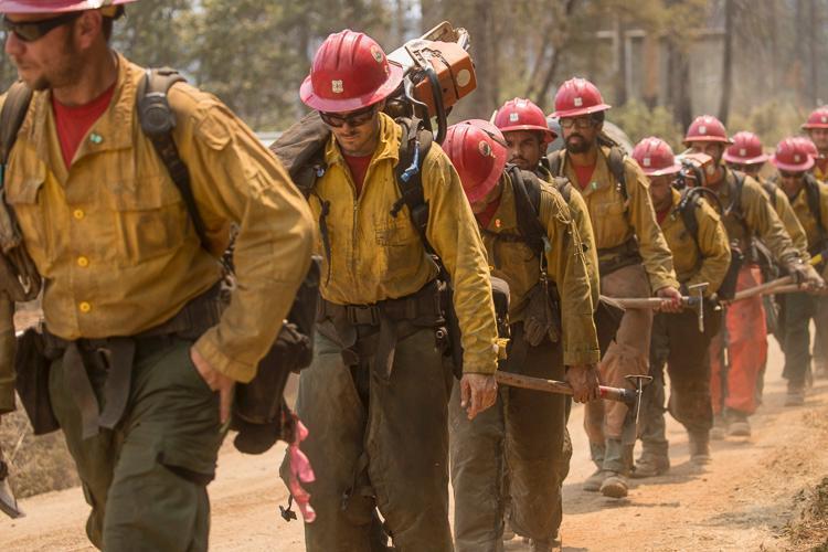Hot Shot Wildland Fire Crew Maryland Hotshots Wildland Crew khaki