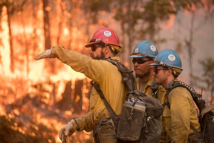 Hot shot crew Ferguson Fire firefighters