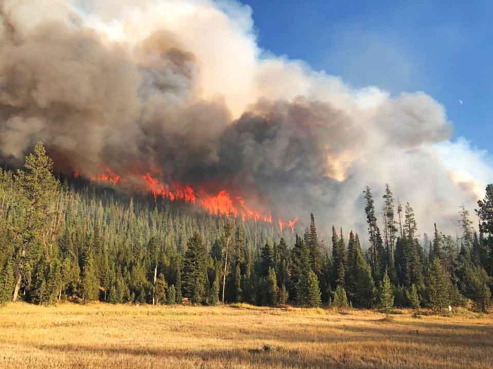 Martin Creek Fire