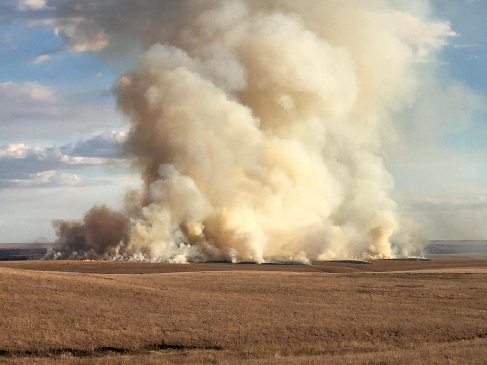Prescribed fire at Tallgrass Prairie National Preserve
