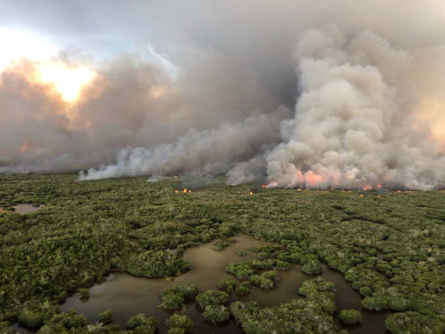 prescribed fire in Everglades and Biscayne National Parks