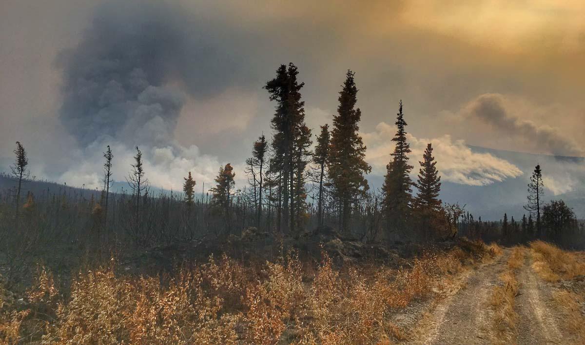 Burnout Hess Fire