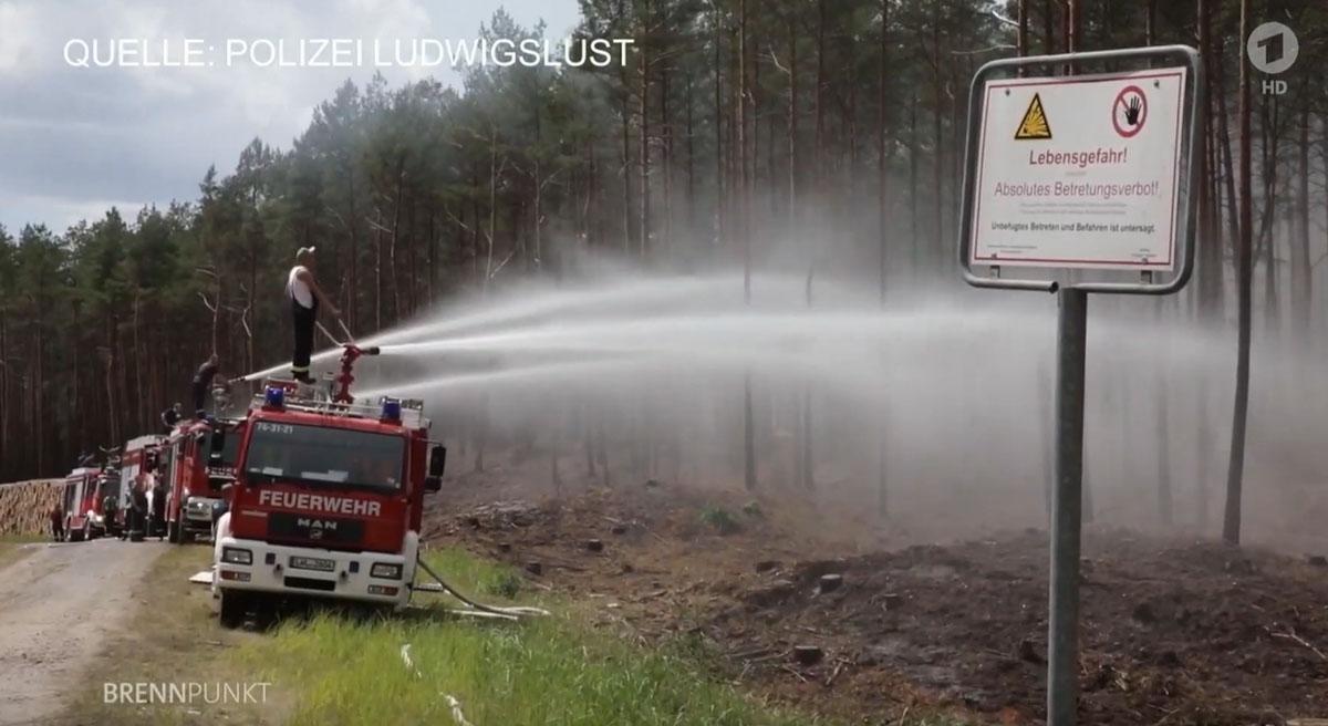 wildfire Germany