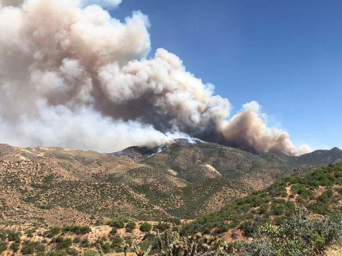 Woodbury Fire Phoenix Arizona