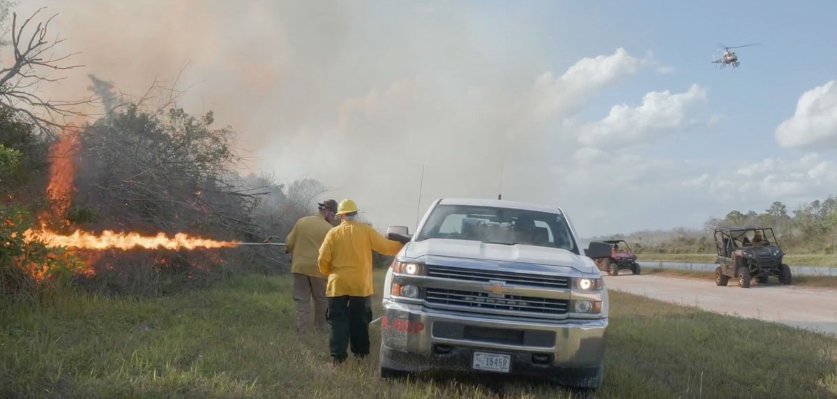 Prescribed fire at Big Cypress National Preserve