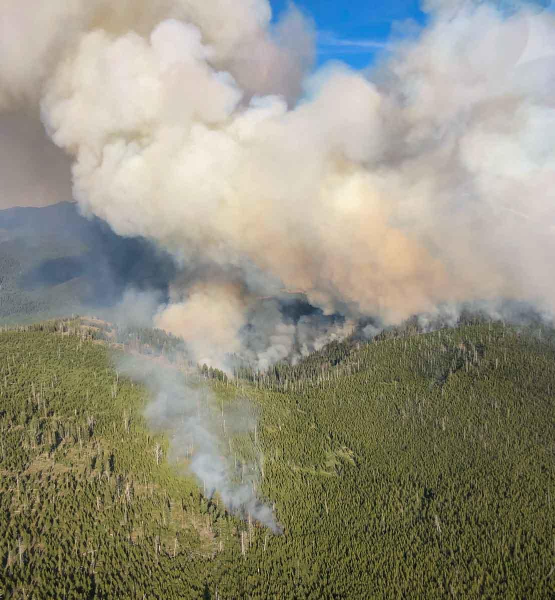 Cow Fire Eastern Oregon