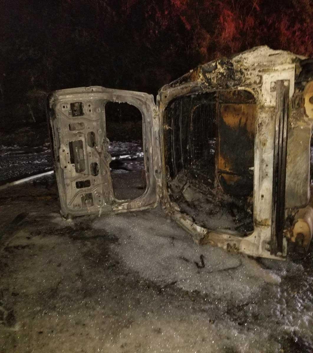 falling bear vehicle crash fire