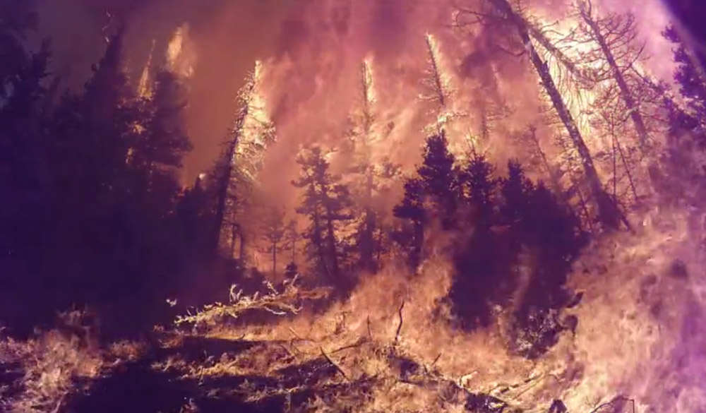 Forest Service fire research