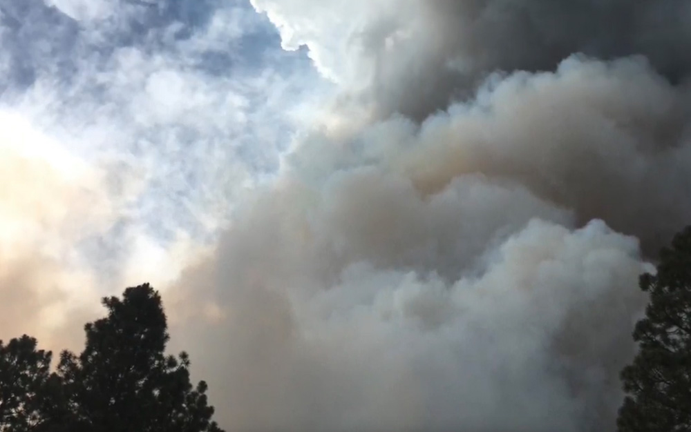 fuel management fire forest smoke