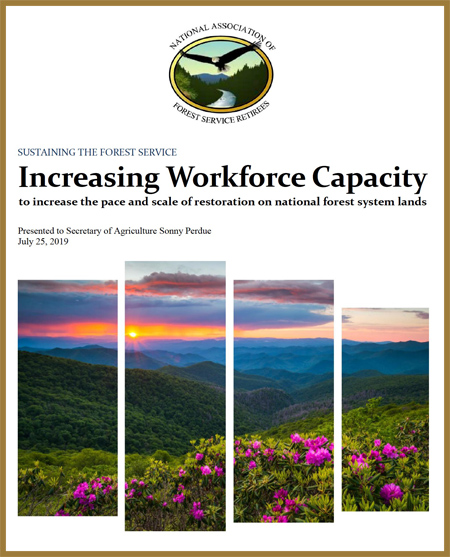 forest service workforce capacity study