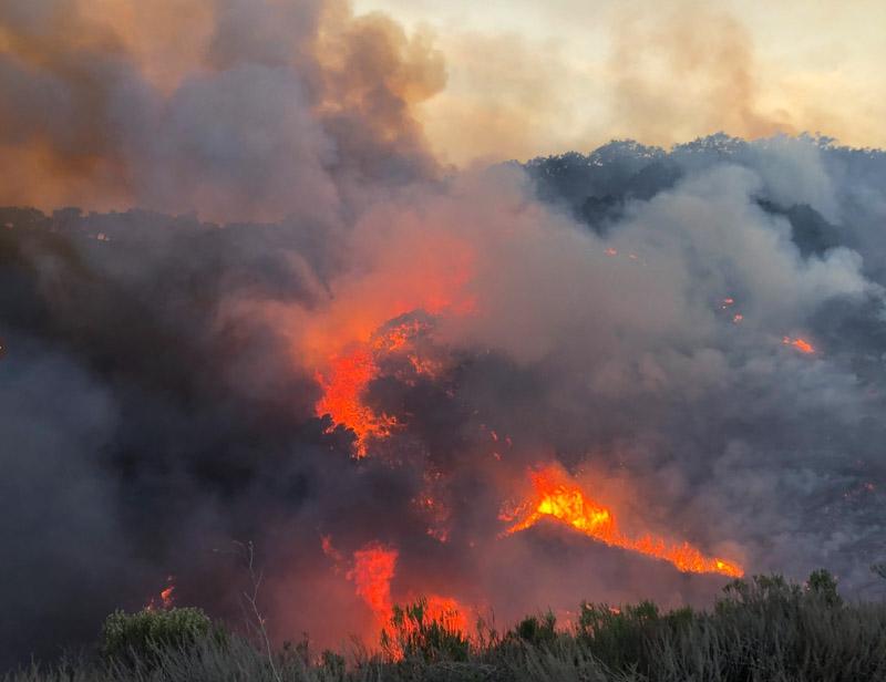 Bar Fire escaped prescribed burn