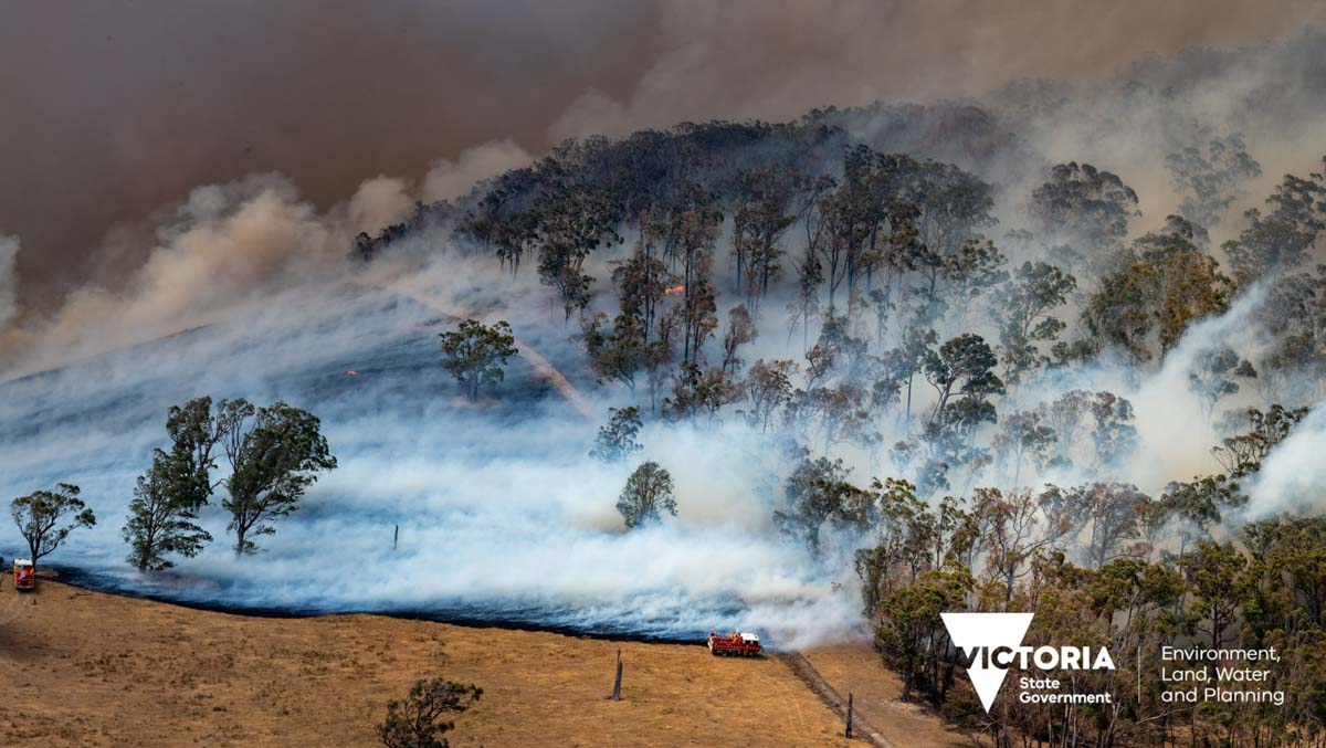 fires in East Gippsland