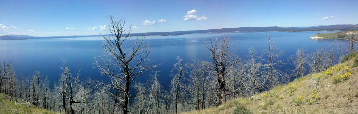 Yellowstone Lake Burned Area