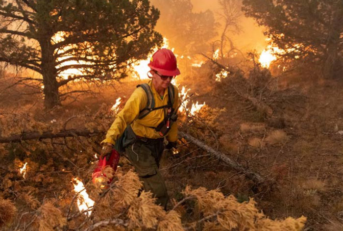 ignite Trout Springs prescribed fire