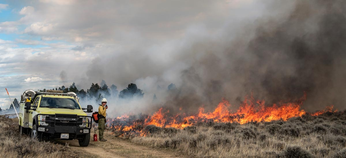 BLM prescribed fire Billings Montana