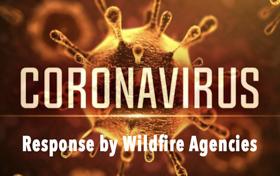 Coronavirus Response wildfire