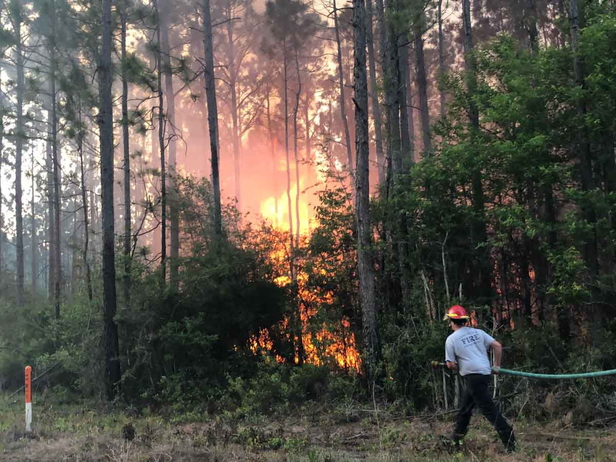 Wildfire Harrison County Mississippi