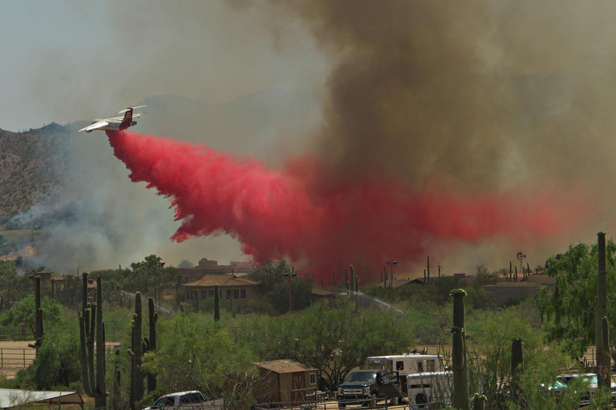 Ocotillo Fire Cave Creek Arizona
