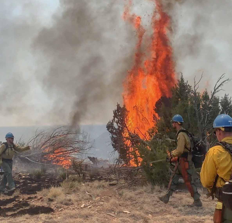 Cherry Canyon Fire Colorado