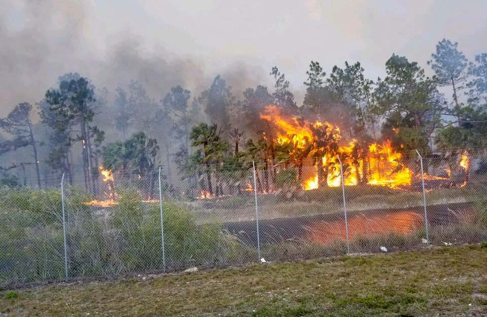 wildfires Naples Florida