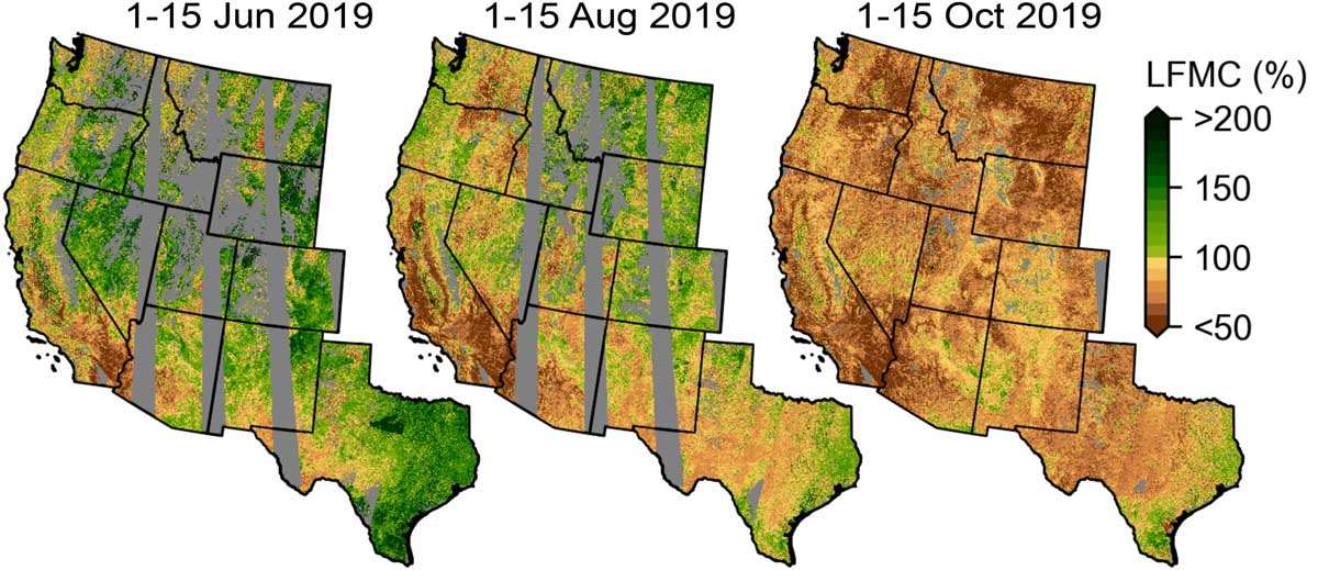 Satellite Fuel Moisture map