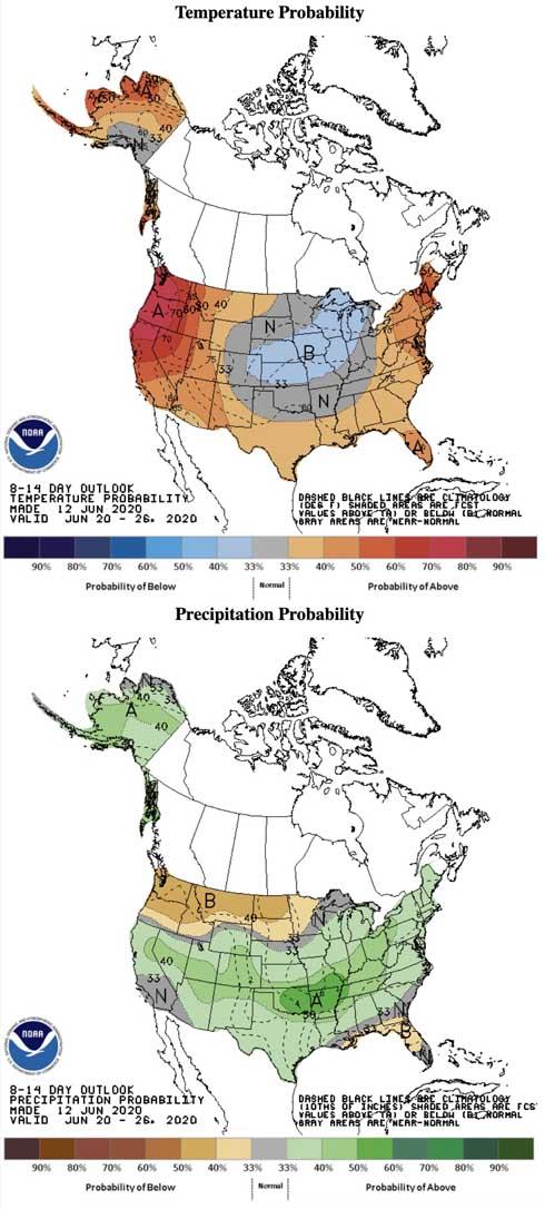 8-14 day temperature and precipitation