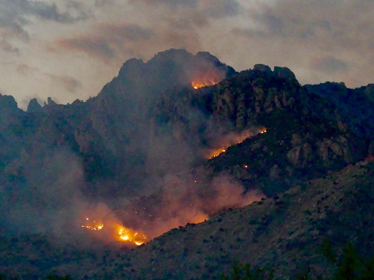 Bighorn Fire Arizona Tucson wildfire
