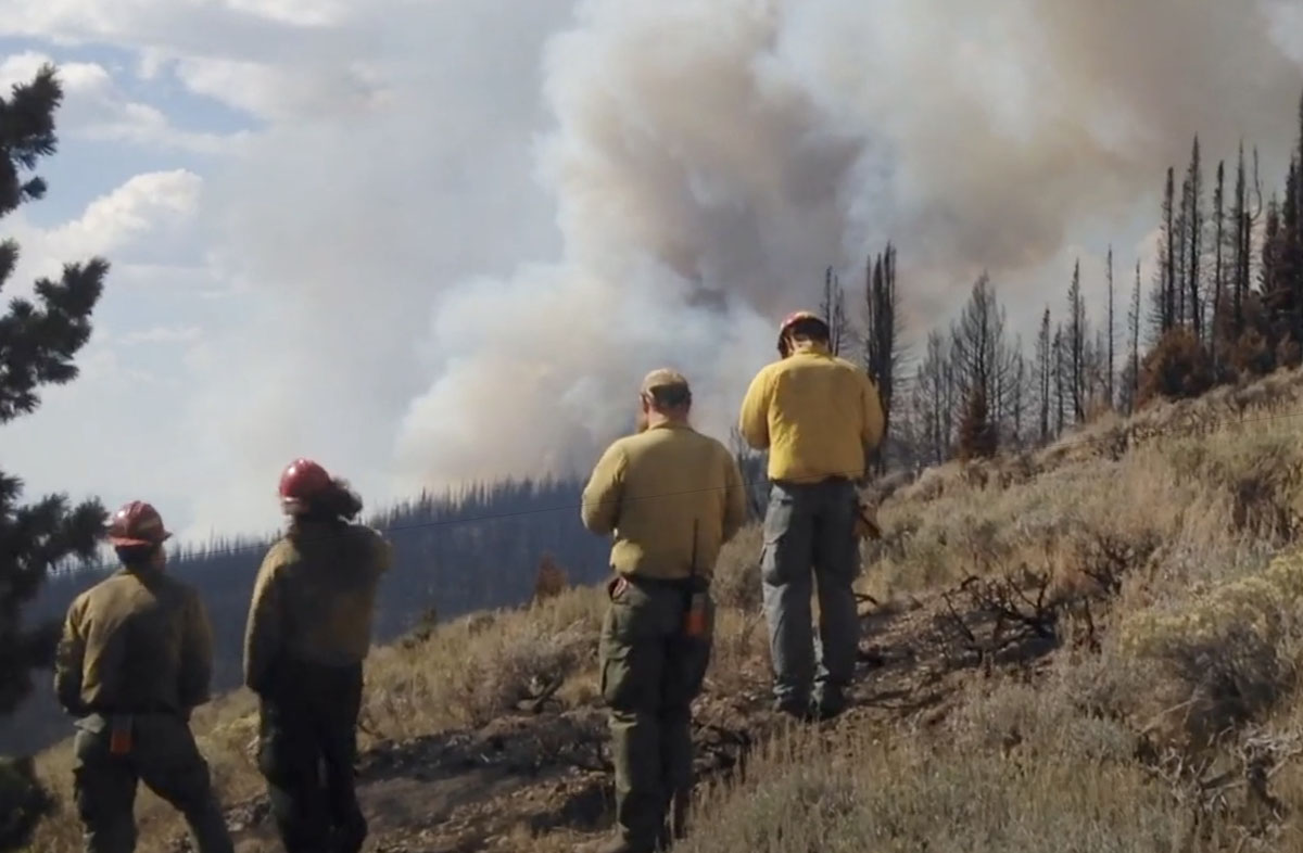 Wilderness Fire decisions