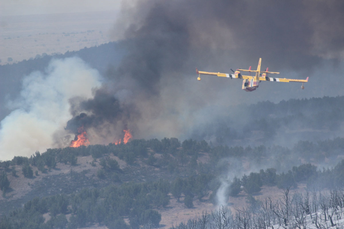 Cedar Fire Elko Nevada July 20 wildfire
