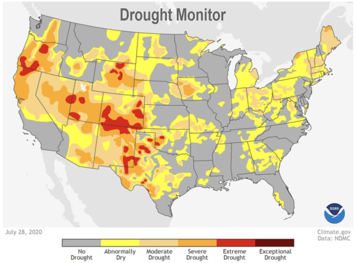Drought Monitor July 28, 2020
