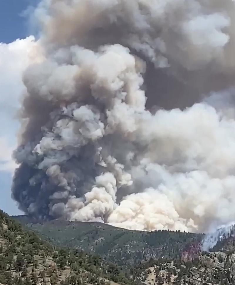 Grizzly Fire August 11, 2020