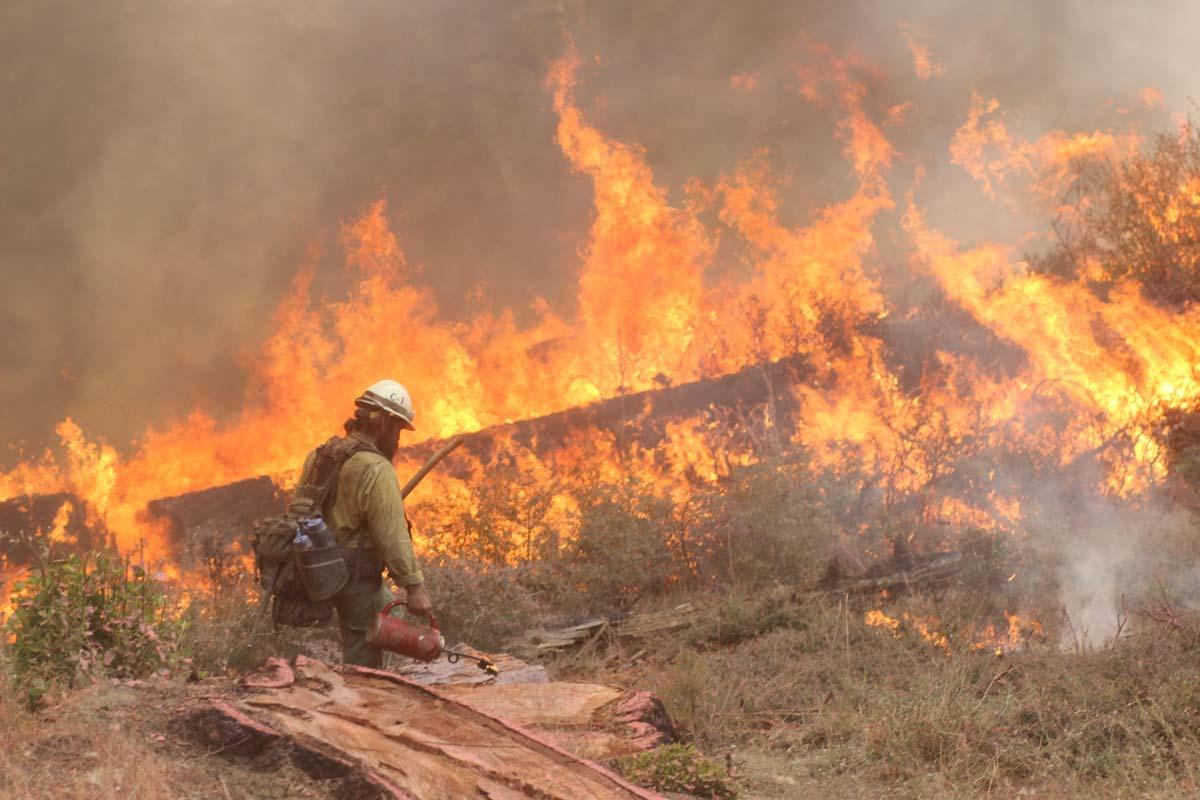 Elkhorn Fire