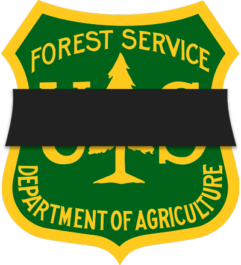 Forest Service fatality
