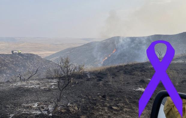 Schill Fire
