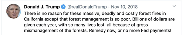 Trump tweet Nov 10, 2018 forest fires california