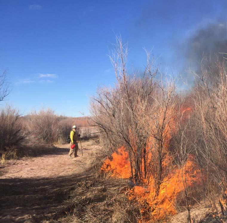 Little Fire SE of Winslow, AZ