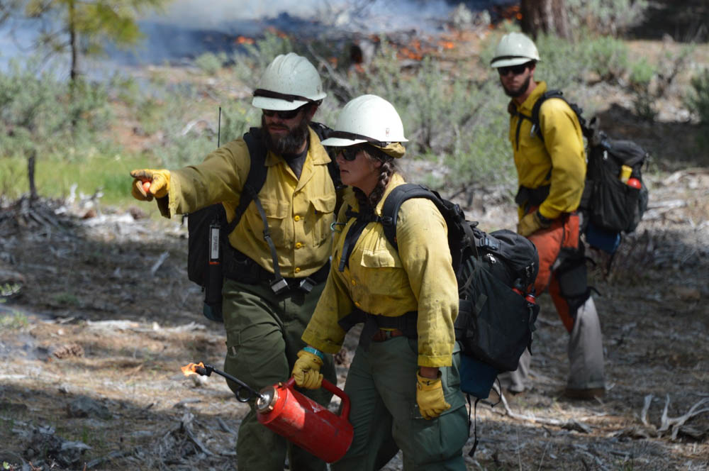 Silver State Interagency Hotshot Crew