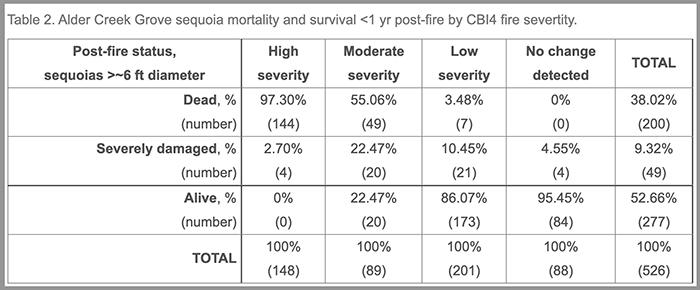 Giant Sequoia mortality, Alder Creek Grove, Castle Fire, 2020. NPS.